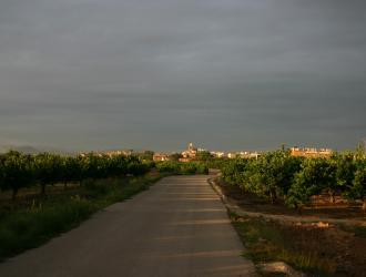 La Ribera Alta
