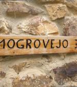 Apartamento Mogrovejo