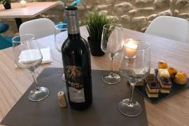 Casona del Vino casa rural en Samaniego (Álava)