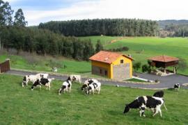 Casa Jesusa casa rural en Gijon (Asturias)