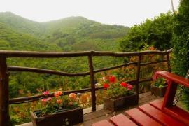 El Bosque de Las Viñas casa rural en Boal (Asturias)
