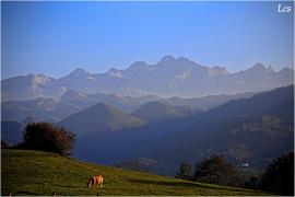 Los Campos casa rural en Cangas De Onis (Asturias)