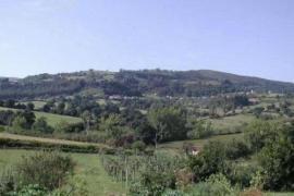 Quinta El Verxel casa rural en Coaña (Asturias)
