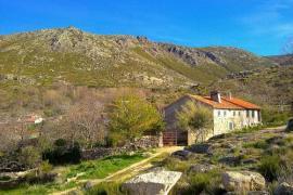 Casa Cerro de la Fuente casa rural en Pradosegar (Ávila)