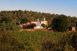 El Lagar de los Almendros casa rural en Herguijuela (Cáceres)
