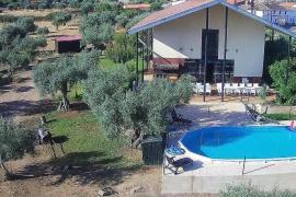 El Olivar del Marques casa rural en Santa Cruz De La Sierra (Cáceres)