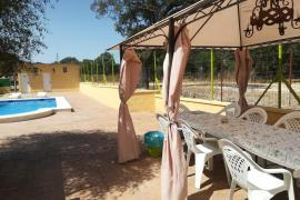 Finca El Labrador casa rural en San Jose Del Valle (Cádiz)