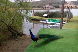 Finca Rural Los Campos casa rural en Ruidera (Ciudad Real)