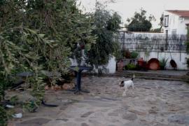 Casa y Meson Rural Cañadas Reales casa rural en El Guijo (Córdoba)