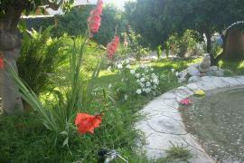 El Amanecer casa rural en Motril (Granada)
