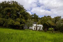 La Piñuela casa rural en Galaroza (Huelva)