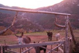 Masia de Llaràs casa rural en Peramola (Lleida)