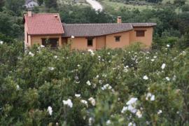 El Esguízaro casa rural en Berzosa Del Lozoya (Madrid)
