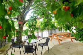 Basaura Berri casa rural en Allin (Navarra)