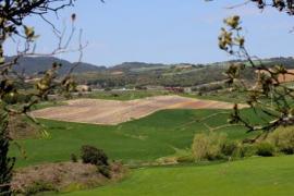 Rincón De Sophie casa rural en Legarda (Navarra)