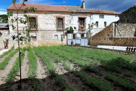 Casa Rural Río Duratón casa rural en Laguna De Contreras (Segovia)
