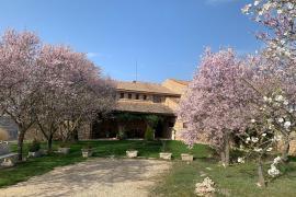 Casa Santa Escolastica casa rural en Sepulveda (Segovia)