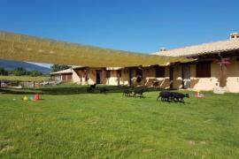 El Enebral casa rural en Santo Tome Del Puerto (Segovia)