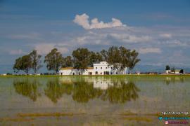 Mas Illa De Riu casa rural en Sant Jaume D' Enveja (Tarragona)