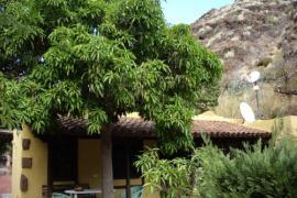 Dos Barrancos casa rural en Santa Cruz (Tenerife)