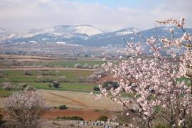 Mesón de Loscos casa rural en Loscos (Teruel)