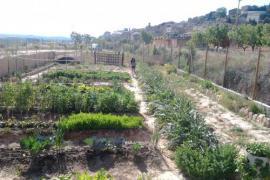 Rural Matarranya casa rural en Calaceite (Teruel)