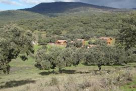 Complejo los Jarales casa rural en Navamorcuende (Toledo)