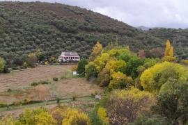 Hoz de la Pinilla casa rural en Navahermosa (Toledo)