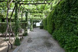 Hotel Quinta da Pacheca casa rural en Lamego (Viseu)
