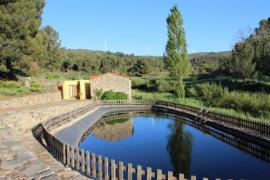 Moinhos Da Tia Antoninha casa rural en Leomil (Viseu)