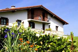Miamendi casa rural en Larrabetzu (Vizcaya)