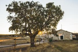 Dehesa de Montealto casa rural en Cabañas De Sayago (Zamora)
