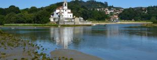 Balmori