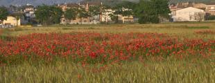 Vilanova Del Valles