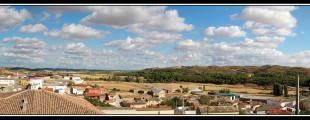 Belmontejo