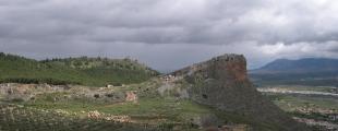 Caparacena