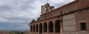 Tortola De Henares