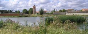 Campo De Cuellar