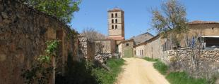 Cedillo De La Torre