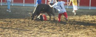 La Boveda De Toro