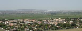Nuez De Ebro