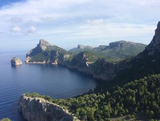 Parque Natural De La Albufera De Mallorca