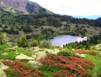 Qu ver y d nde dormir en vall de boi ta l lleida - Casas rurales en pirineo catalan ...
