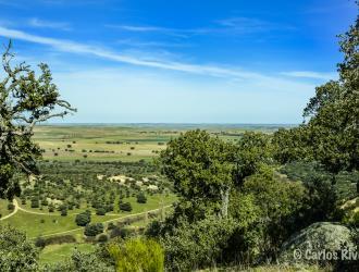 Sierra De Avila