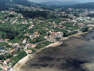 Pinela