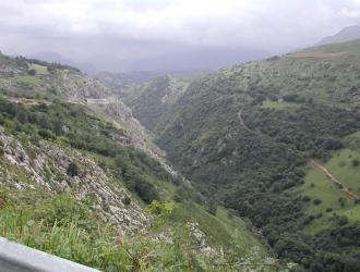 Ortiguero De Cabrales