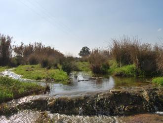 Hinojosa Del Valle