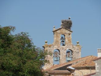 Torrepadre