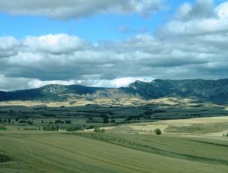 Zuñeda