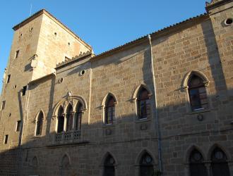Palacio de Monroy ( Casa de las Dos Torres)